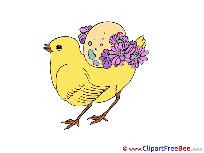 Chicken Clipart free Illustrations