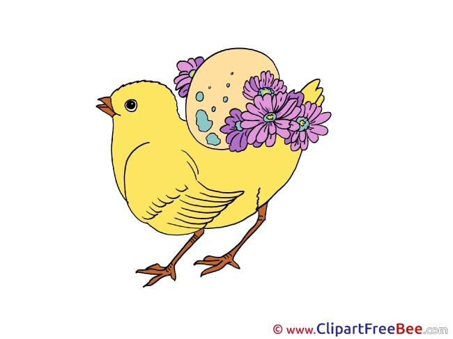 Chicken Clipart free Illustrations