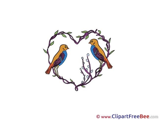 Nightingale Pics download Illustration