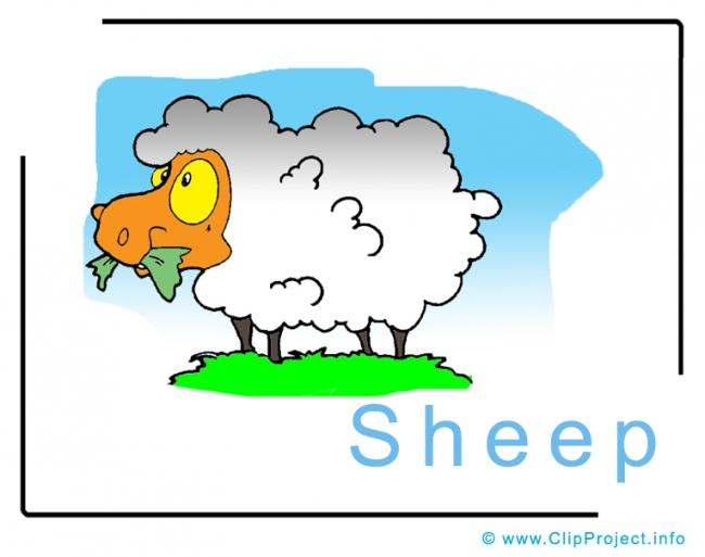 Sheep Clip Art Image free - Animals Clip Art Images free