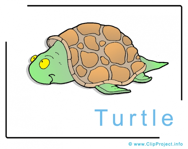 Turtle Clip Art Image free - Animals Clip Art Images free