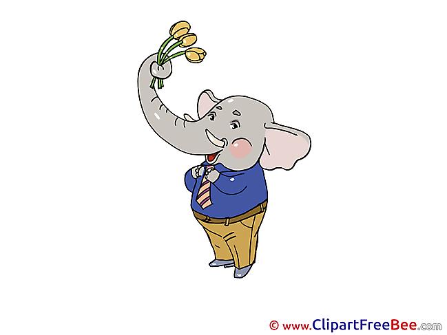 Elephant download Birthday Illustrations