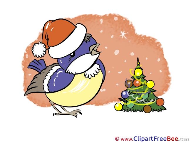 Bullfinch Pics Christmas Illustration