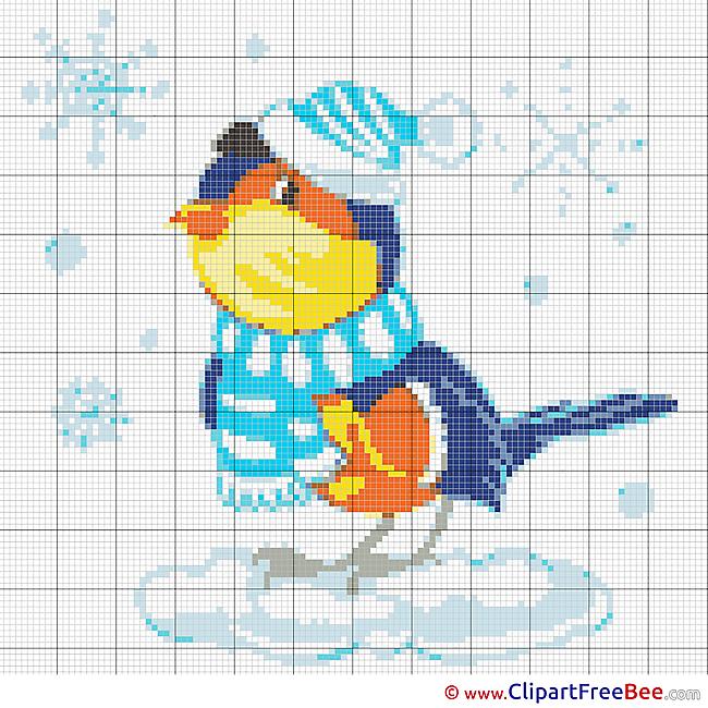 Bullfinch download Cross Stitch for free