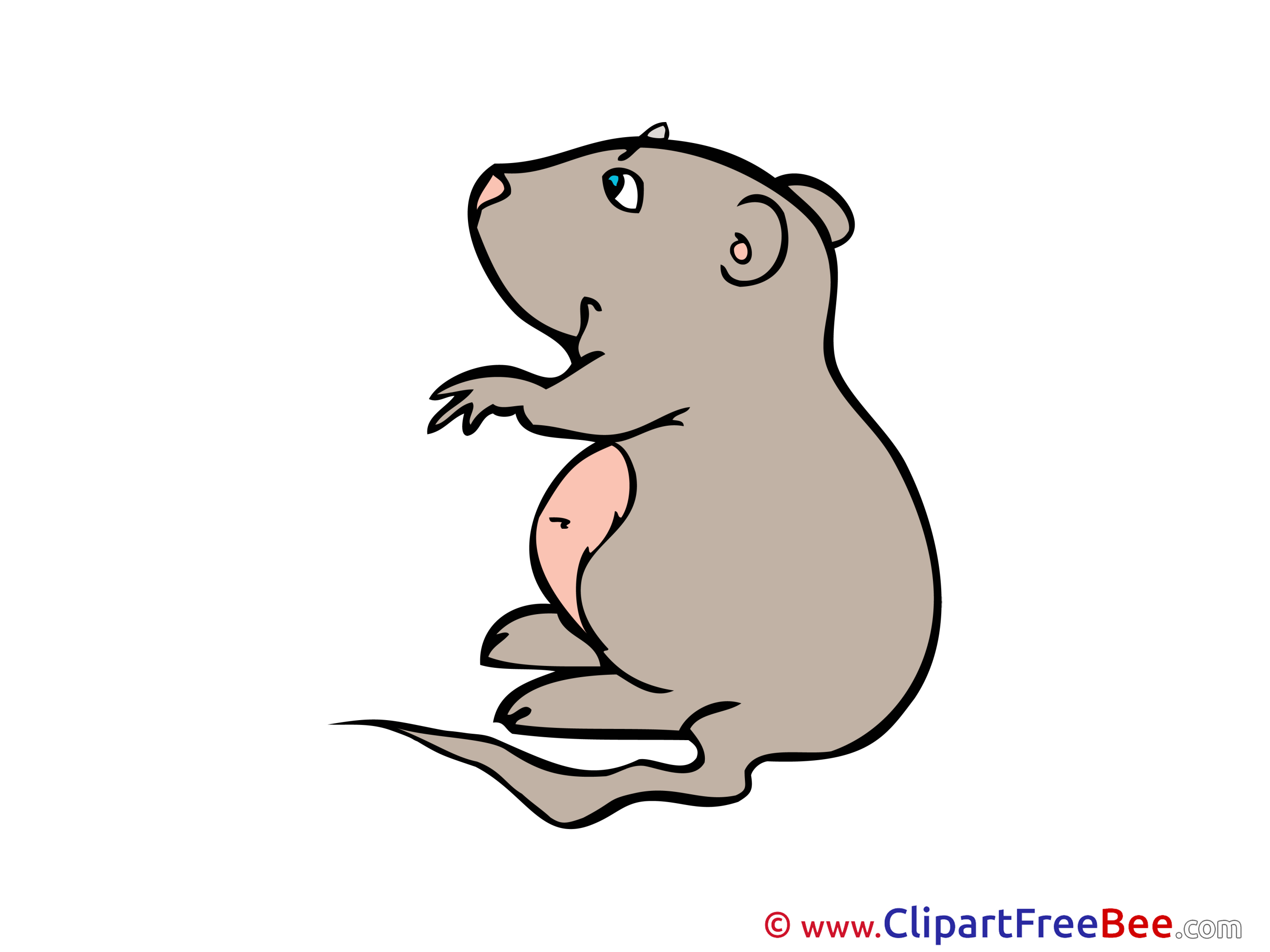 Hamster free printable Cliparts and Images