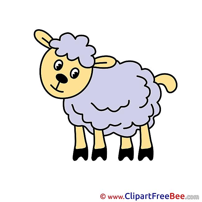 Lamb Pics printable Cliparts