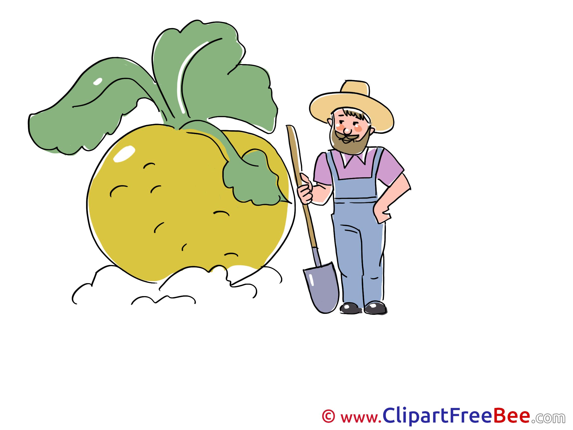 Turnip Gardener Clip Art download for free