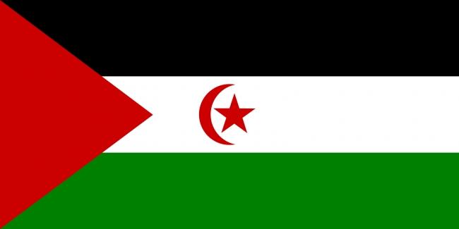 Westren Sahara flag free image
