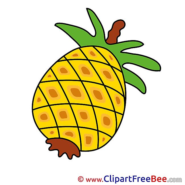 Ananas download printable Illustrations