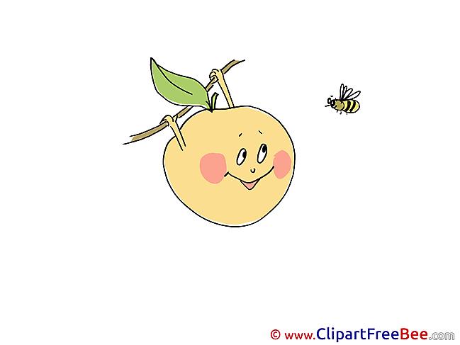 Bee Apple Pics free Illustration