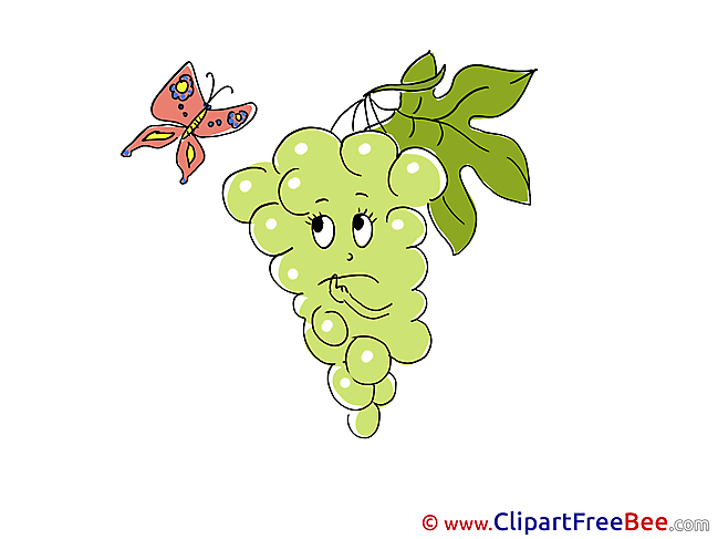 Butterfly Grape free Illustration download