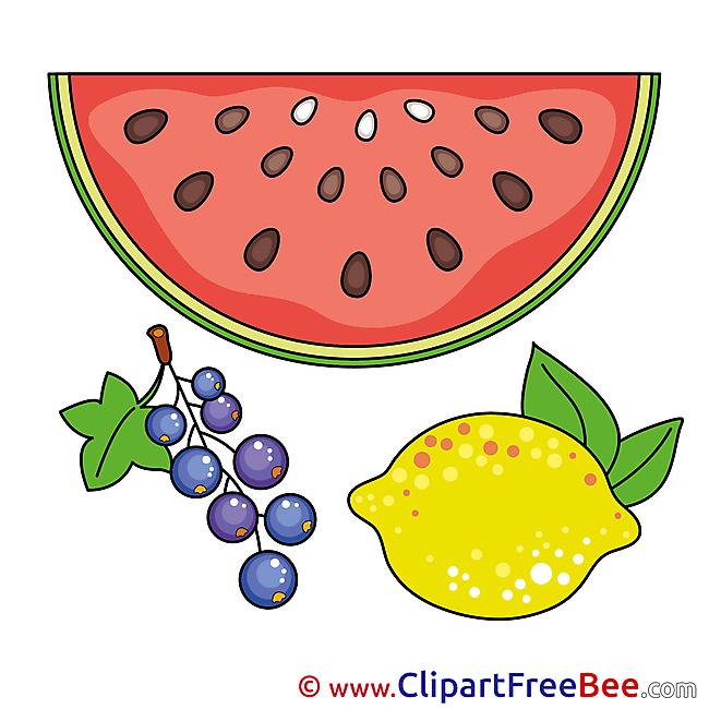Currant Watermelon Lemon Images download free Cliparts