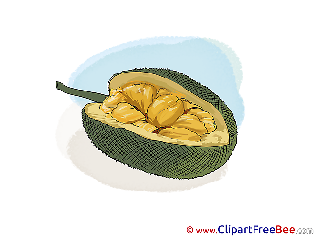 Exotic Fruit Clip Art download for free
