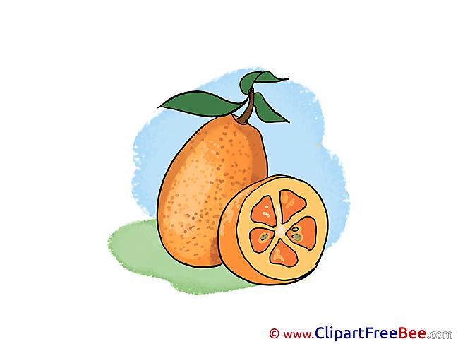 Fruit Leaves printable Illustrations for free