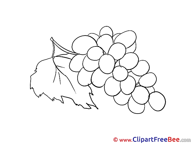 Grape Cliparts printable for free