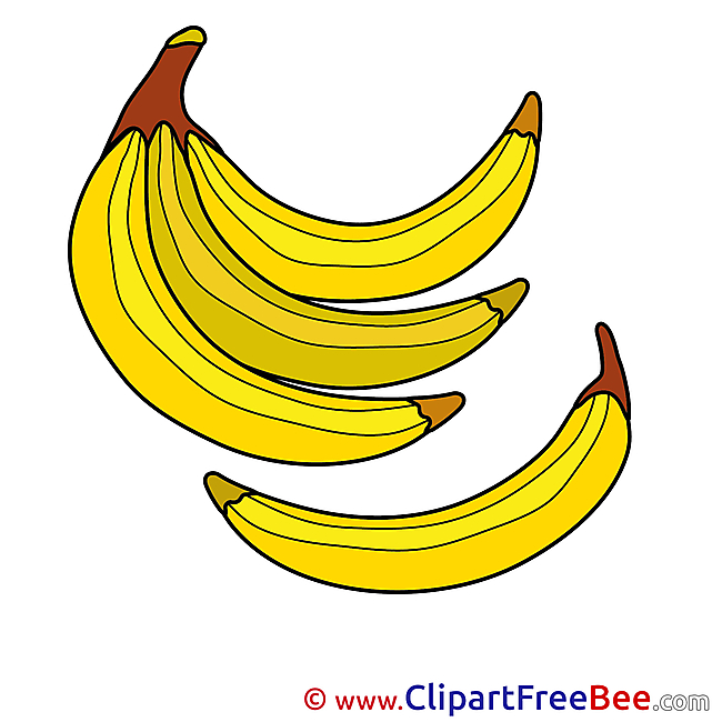 Illustration Bananas Pics free download Image