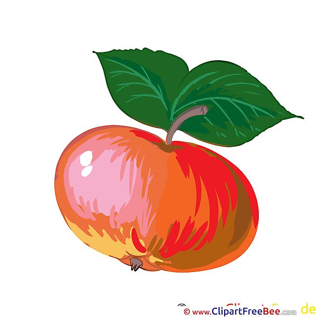 Leaves Apple download printable Illustrations