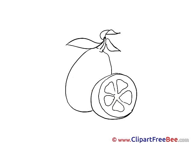 Lemon Clip Art download for free