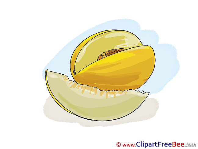 Melon download printable Illustrations