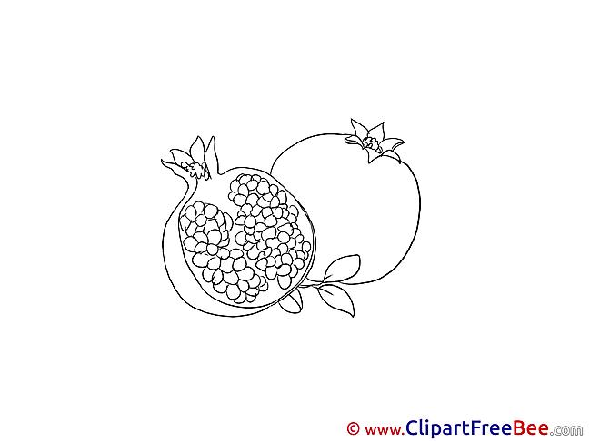 Pomegranate Pics printable Cliparts
