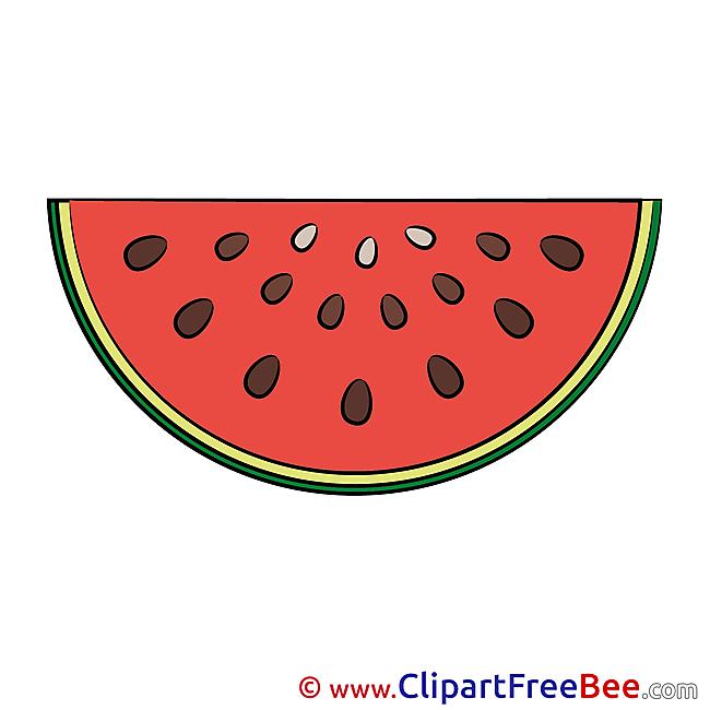 Watermelon Pics download Illustration