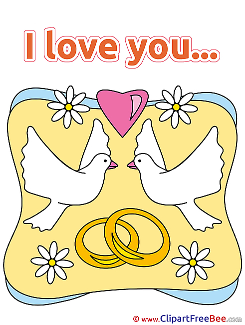 Chamomiles Pigeons Rings I Love You Illustrations for free