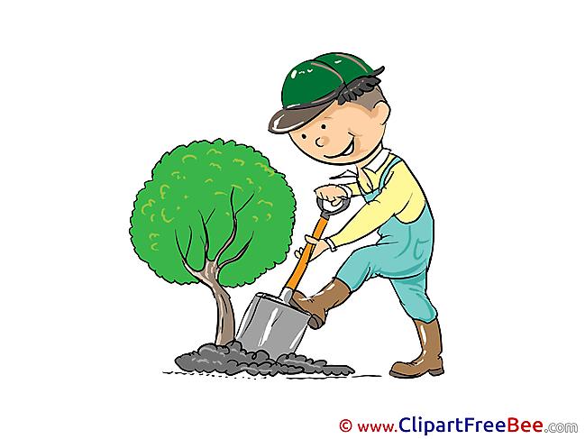 Gardener Tree Clip Art download for free