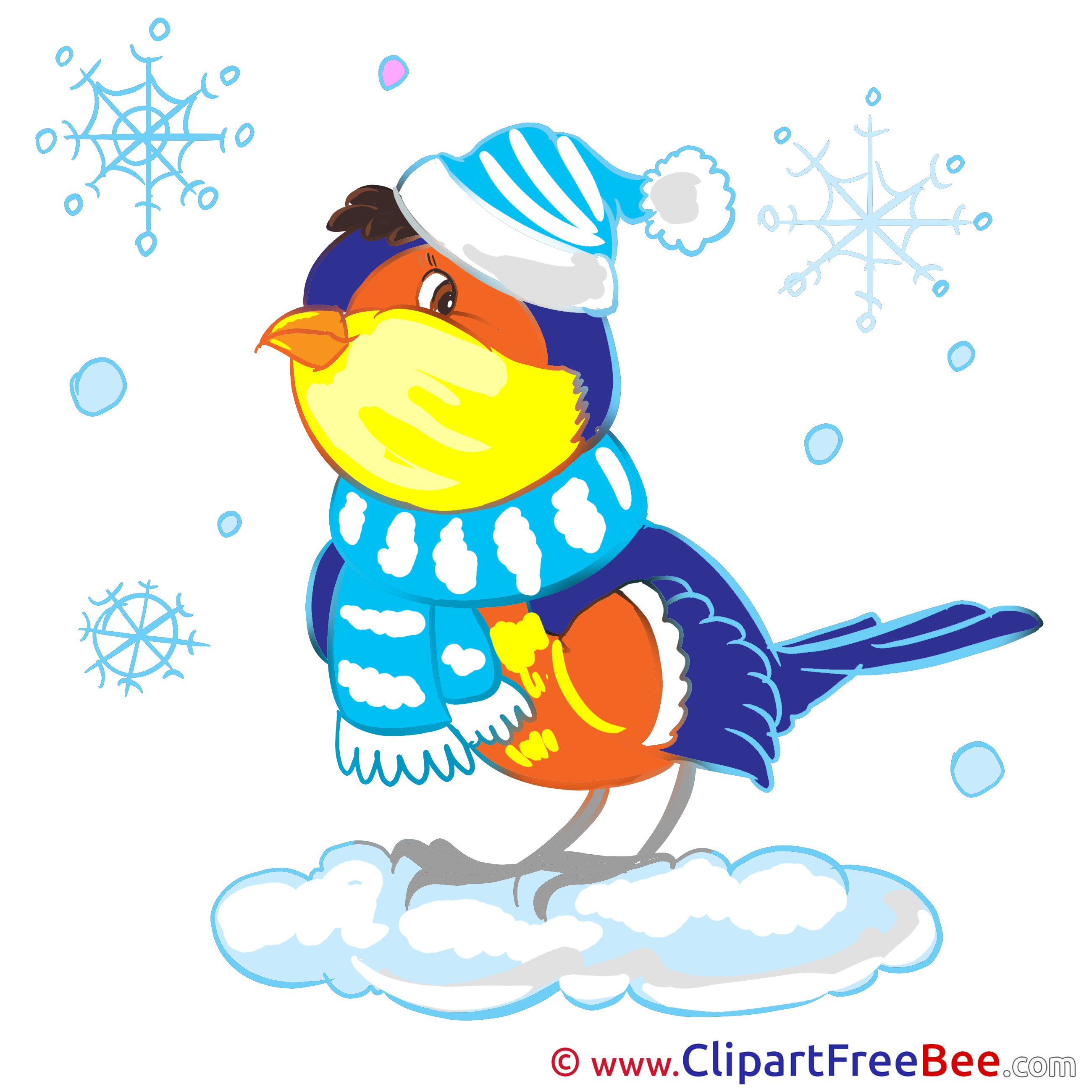 Bullfinch Cliparts Winter for free