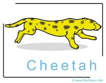 Cheetah Clip Art Image free