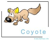 Cojote Clip Art Image free