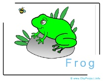 Frog Clipart Picture free