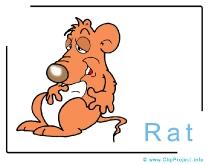 Rat Clip Art Image free - Animals Clip Art free