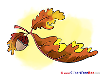 Acorn Leaf free Illustration Autumn