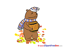 Bear Honey Clipart Autumn Illustrations