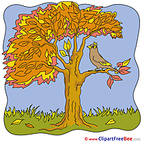 Bird Tree free Illustration Autumn