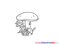 Coloring Mushroom Pics Autumn Illustration