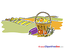 Harvest Basket Clipart Autumn free Images