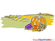 Vegetables Field Clipart Autumn Illustrations
