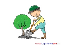 Gardener Tree Clip Art download for free