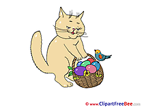 Basket Easter Eggs Cat free Cliparts for download