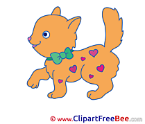 Hearts Cat Pics free download Image