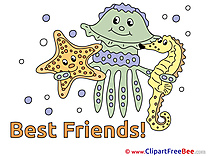 Medusa Starfish Sea Horse free Illustration Best Friends