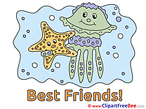 Starfish Medusa Pics Best Friends Illustration