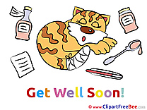Cat Medicine Clip Art download Get Well Soon