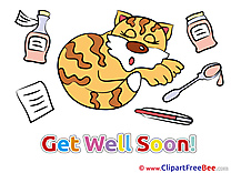 Sleeping Cat Pics Get Well Soon free Cliparts