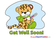 Tiger free Illustration Get Well Soon