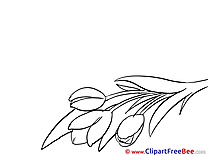 Bouquet Goodbye Illustrations for free