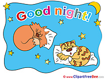 Animals Cats Stars Moon Good Night Clip Art for free