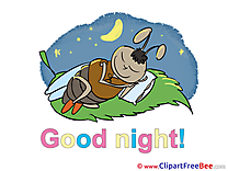 Bug Pillow Good Night download Illustration