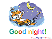 Cat Good Night free Images download